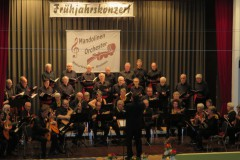 6. März 2016 Frühjahrskonzert des Mandolinenorchestors der Naturfreunde Bretten/Berghausen